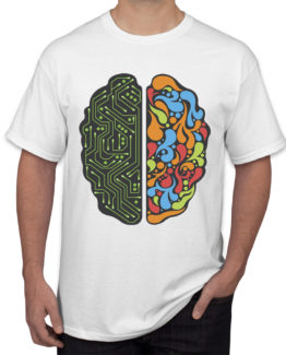 Brain map white-front